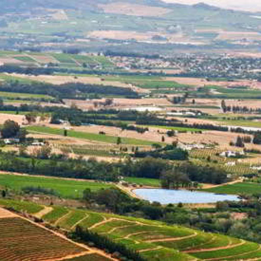Paarl Wine Route