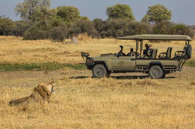 machaba-safaris-little-machaba-camp-16